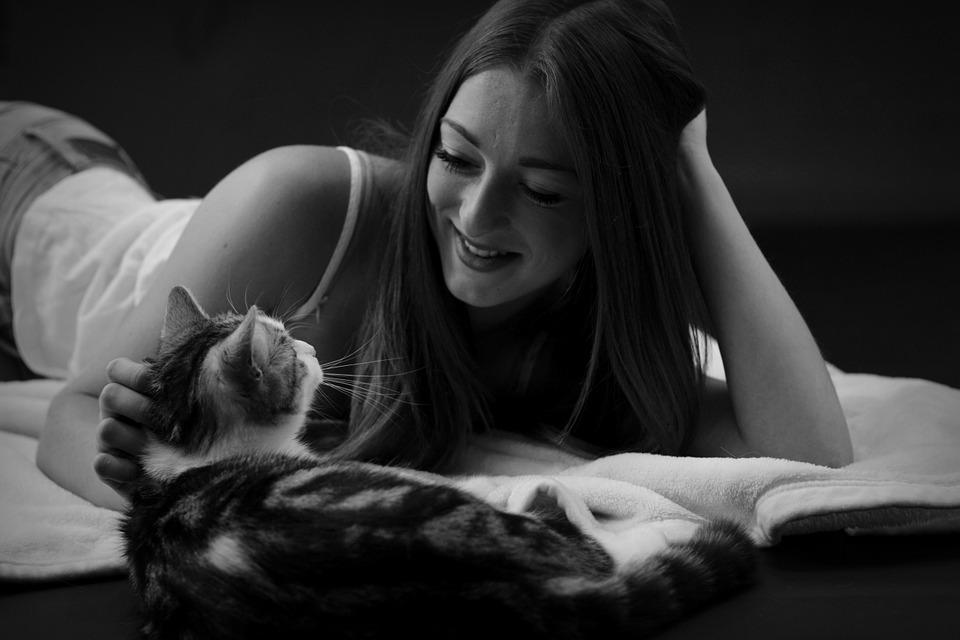 猫は臨床症状が出にくい病気